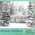 Pattison Pavillion puzzle box top